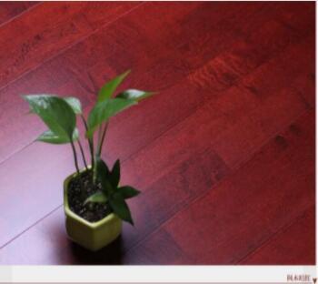 欧氏舞台专用红运动木地板