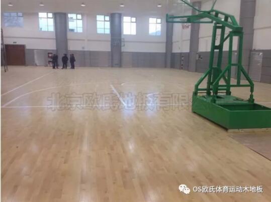 中国人民银行玉树藏族自治州中心支行篮球馆木地板案例